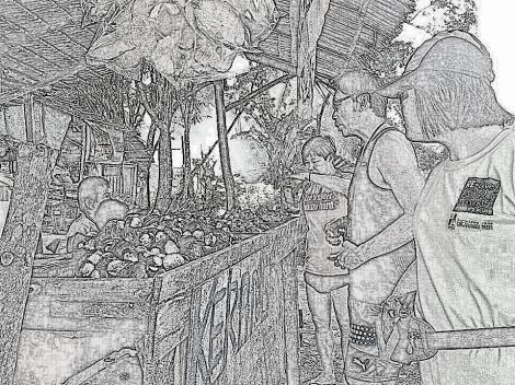 roadside seafood stall