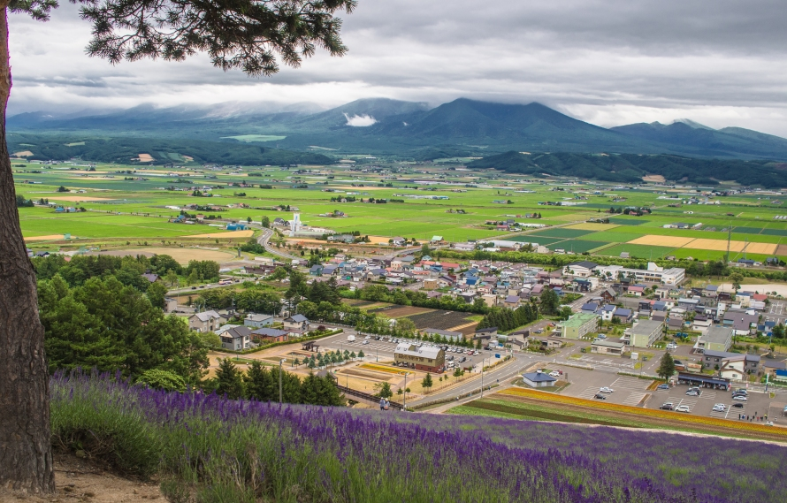 view from top of nakafurano