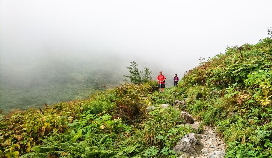 finally a proper trail