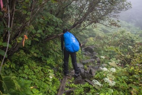 a wet wet trek