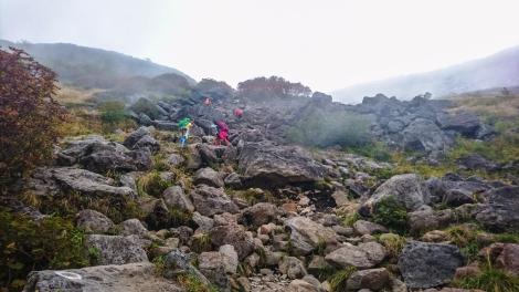 up the ragged rocks