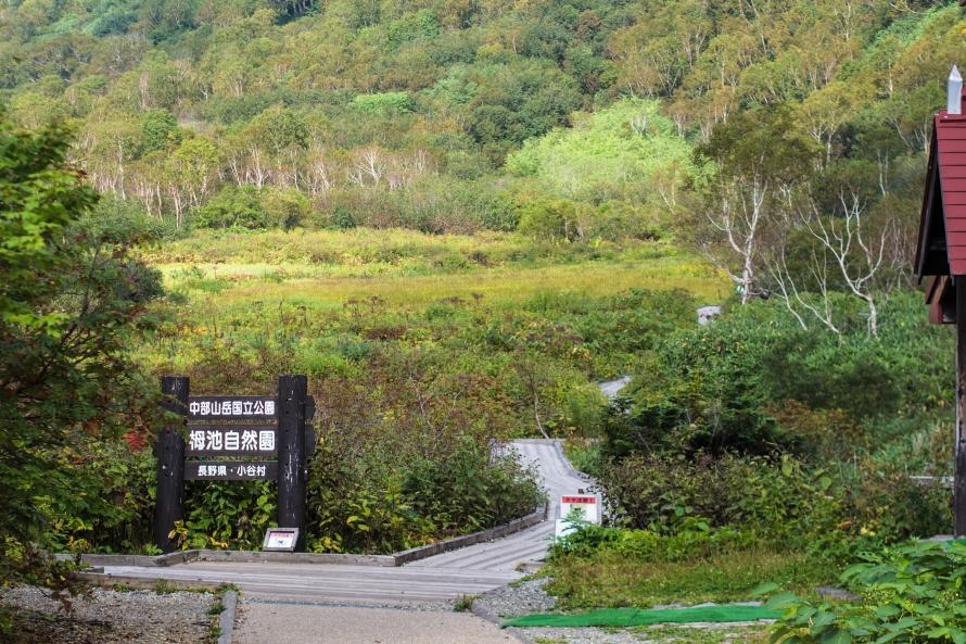 tsugaike shizenen (tsugaike nature park)